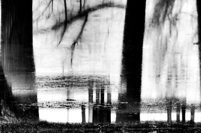 Copyright ©Andrea Danani - Ciminiere